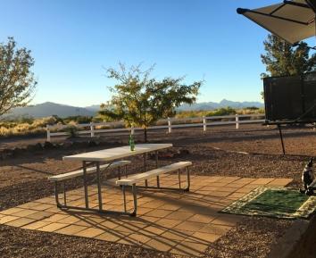 my-backyard-chiricahuas