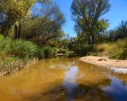 san-pedro-river