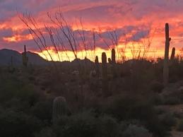 mcdowell-sunset