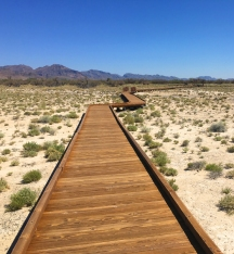 Boardwalk to the springs